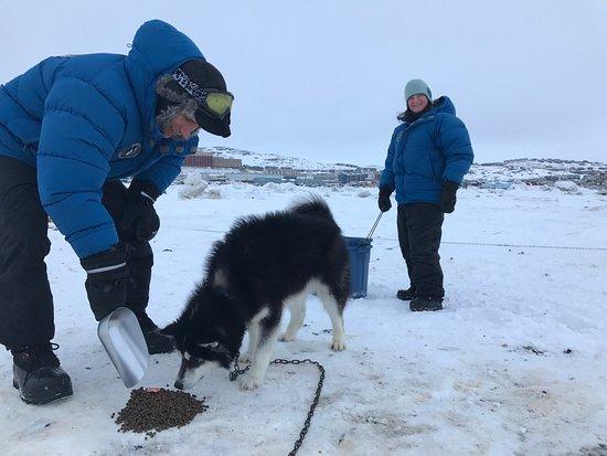 Iqaluit, Canada: photo2.jpg