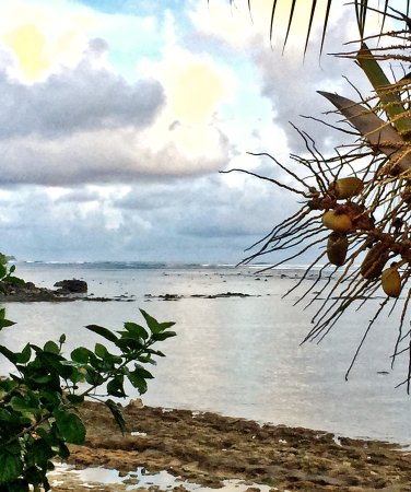 Sinalei Reef Resort & Spa: View from our front deck