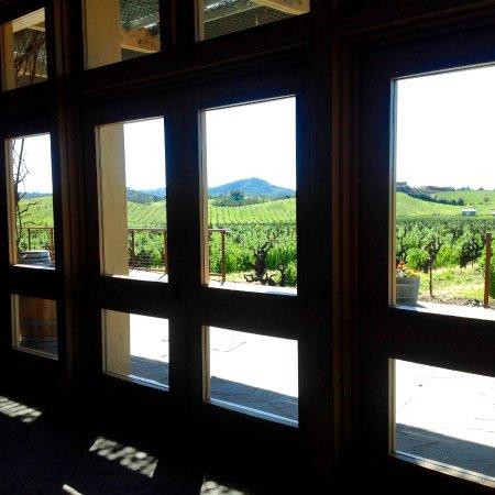 Ridge Vineyards Lytton Springs : View from inside the tasting room.