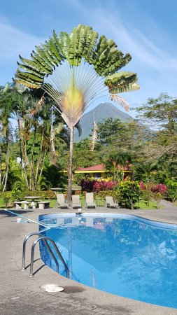 Arenal Country Inn: My breakfast view! What a great view to start the day.
