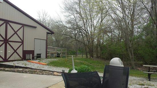 Williamson, IL: Horses area near the seating