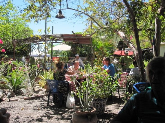 el Papagayo Cantando: Like dining in a friend's yard