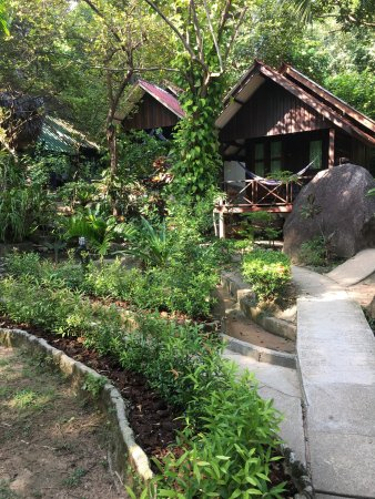 Ko Nang Yuan, Tailandia: photo0.jpg