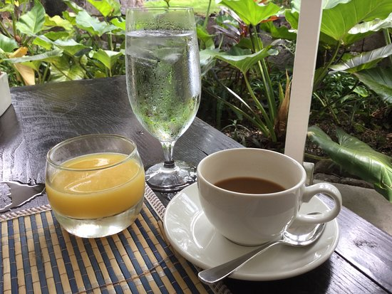 Montpelier Plantation & Beach: Breakfast in the rainforest