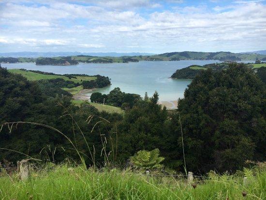 Wyspa Waiheke, Nowa Zelandia: photo1.jpg