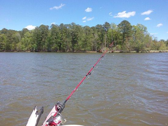 Winnsboro, Carolina Selatan: 20170407_134800_large.jpg