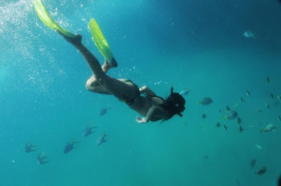 Glass Bottom Boat and Snorkel Tour in ...