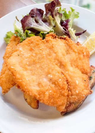 Mendota Heights, MN: chicken schnitzel