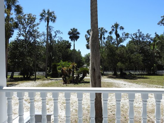 DeBary, FL: View From The Front Porch