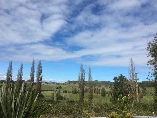 Te Kuiti, Nya Zeeland: photo1.jpg