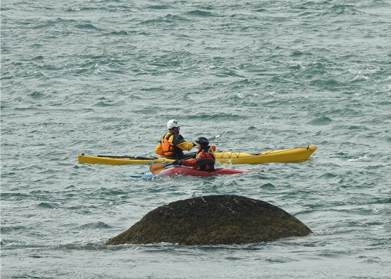 Garibaldi, OR: kayaks