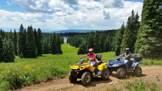 Cedaredge, CO: The views from our ATV tours are stunning.