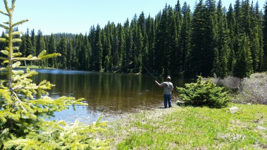 Cedaredge, CO: Fly fishing lessons and trips.