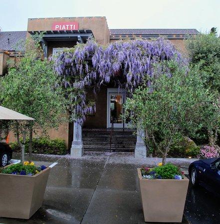 Piatti Restaurant Mill Valley Menu
