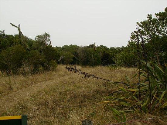 JM Barker (Hapupu) National Historic Reserve
