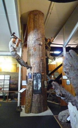 Matakohe, Новая Зеландия: Hard yakka in those days.