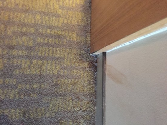Royal Orchid Central, Vadodara: Dirty public areas