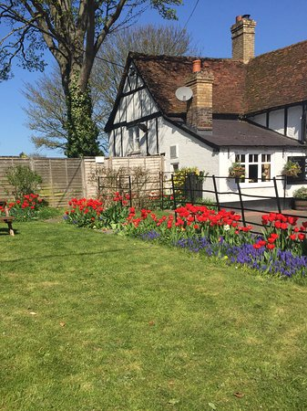 One Of The Gardens In Full Bloom Picture Of The Old Farm Inn Dunstable Tripadvisor