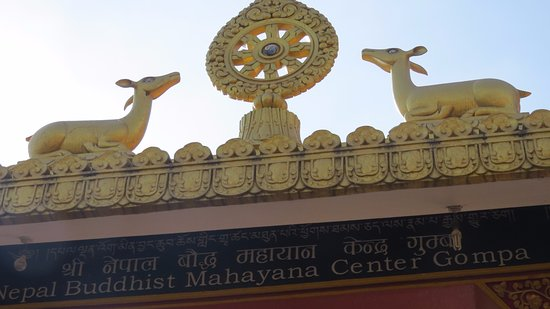Kopan Monastery: Two deers which resembles the rich buddhist tradition