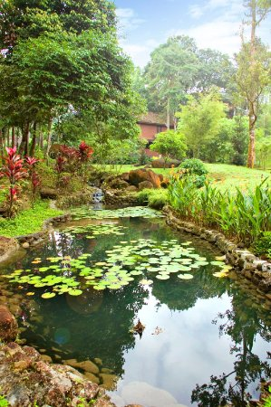 Sentosa Villa Taiping Review