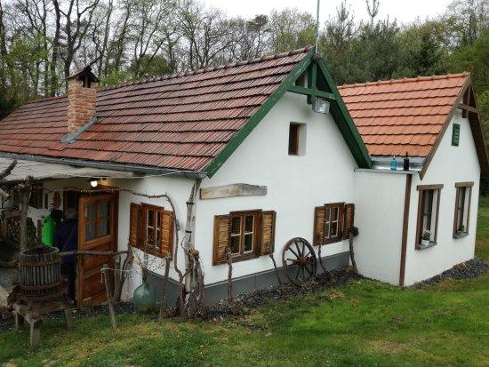 Kohfidisch, Austria: IMG_20170407_171455_large.jpg
