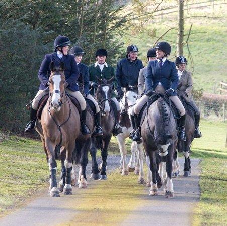 Pett Bottom, UK: Bursted Manor Riding Centre