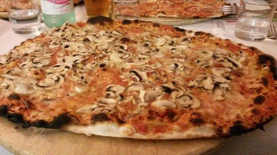 Pizza con i funghi e mozzarella foto di il giardino segreto roma tripadvisor - Pizzeria con giardino roma ...