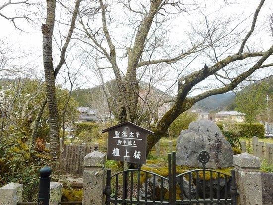 Ryujusansesonji Temple