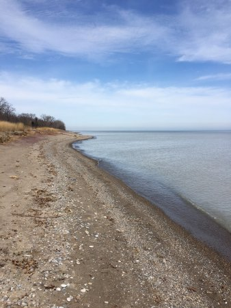 Point Pelee National Park照片