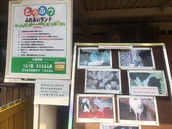 Beppu Rakutenchi (Japan): Top Tips Before You Go (with ...