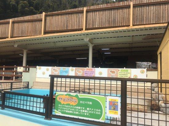 photo0.jpg - Picture of Beppu Rakutenchi, Beppu - TripAdvisor