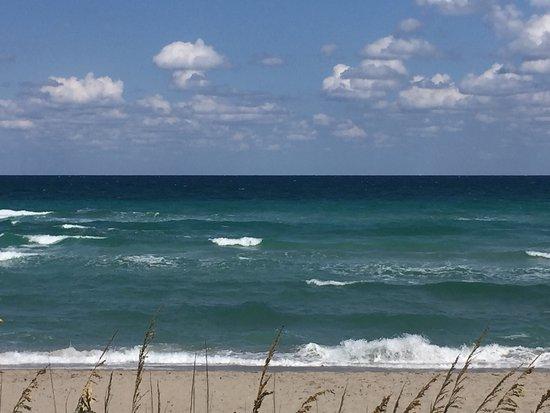 Hallandale Beach: Playa Hallandale vista desde el condominio The Tides