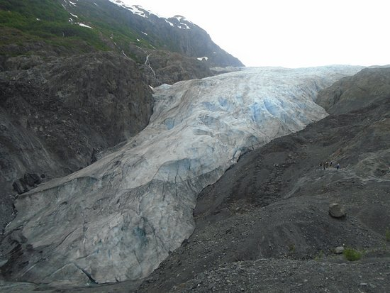 Kenai Fjords National Park, AK: visão do Exit Glacier