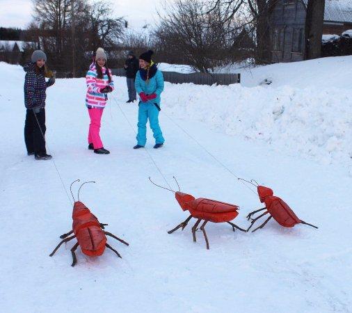 Cherepovets, Rússia: Тараканьи бега