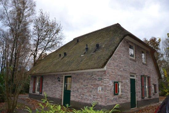 Ees, Países Bajos: 19 pers. boederij