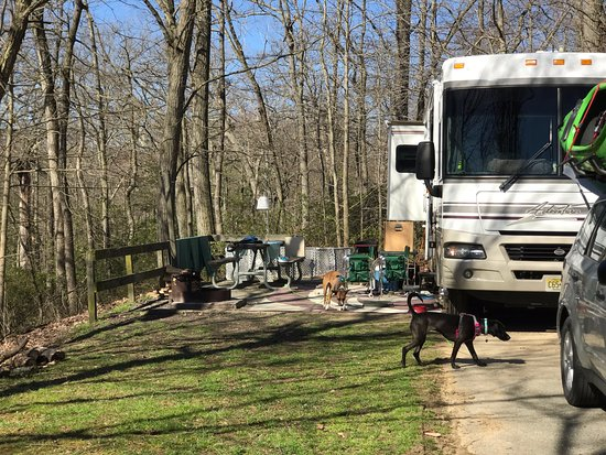Elk Neck State Park Campground