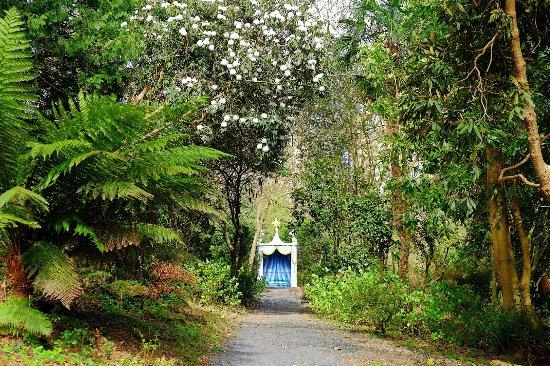 Portmeirion Picture Of Portmeirion Village Portmeirion