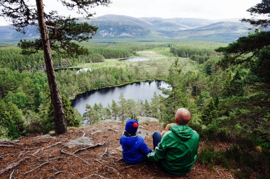 Nethy Bridge, UK: Our favourite day trip to the Uath Lochans