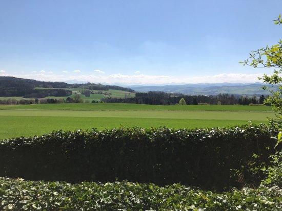 Frauenfeld, Suiza: photo0.jpg
