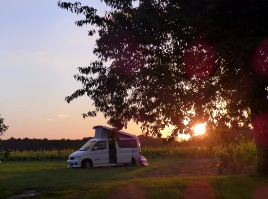 Athee-sur-Cher, France : Camped in the vineyard at Sunset