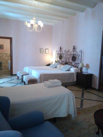 Hotel Palacio Marques de la Gomera: IMG_20170408_123317_large.jpg