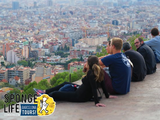 ‪Barcelona Tours by Sponge Life‬