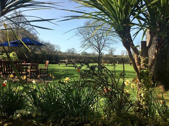 Brook, UK: The Green Dragon garden
