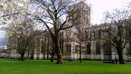 View From The Gardens Picture Of York Minster York Tripadvisor