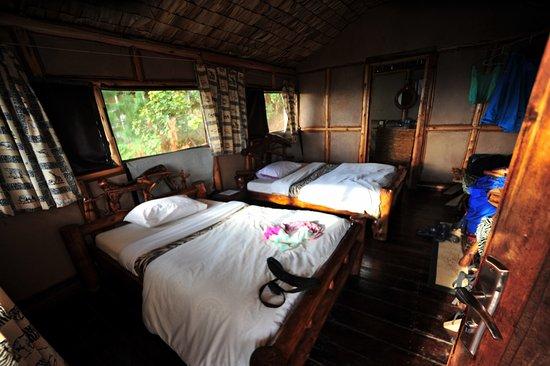 bild von gorilla mist camp kabale tripadvisor. Black Bedroom Furniture Sets. Home Design Ideas