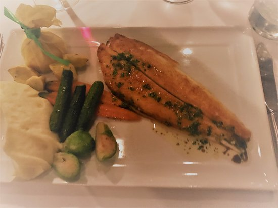 Wally's Desert Turtle : Dover Sole