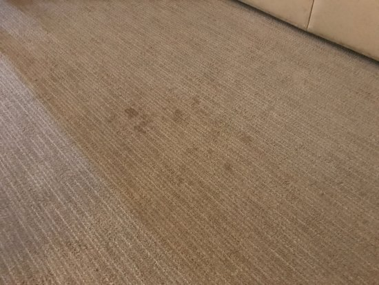 The Elms Hotel and Spa: Stain on the old carpeting