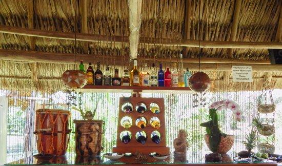 Macaw Bank Jungle Lodge: Tribal Bar