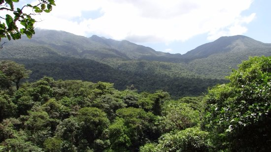 Tenorio Volcano National Park, Costa Rica: Overlooking the rainforest