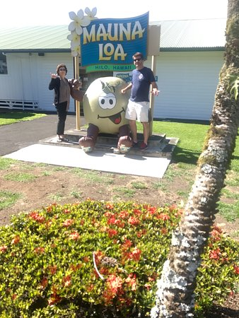 Keaau, HI: Mauna Loa company!! It was so COOL!! They even ship to your home!
